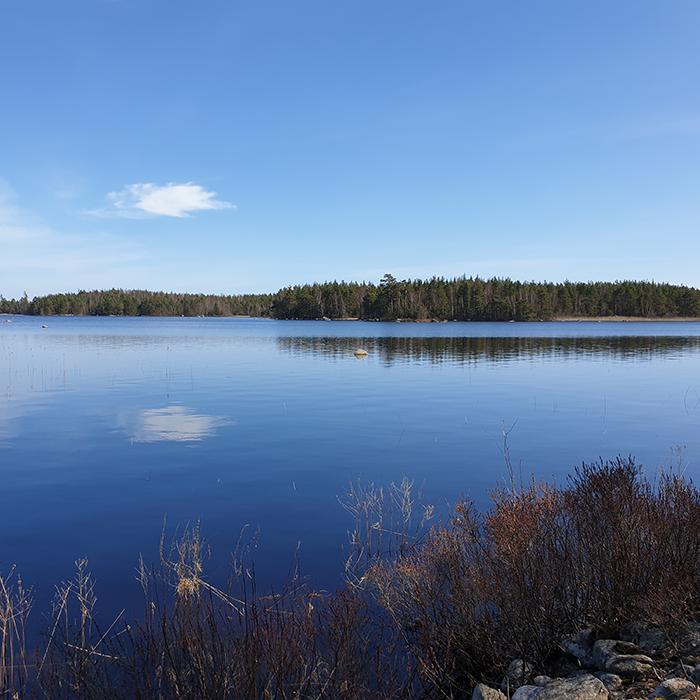 Waterbound hike - 6 km