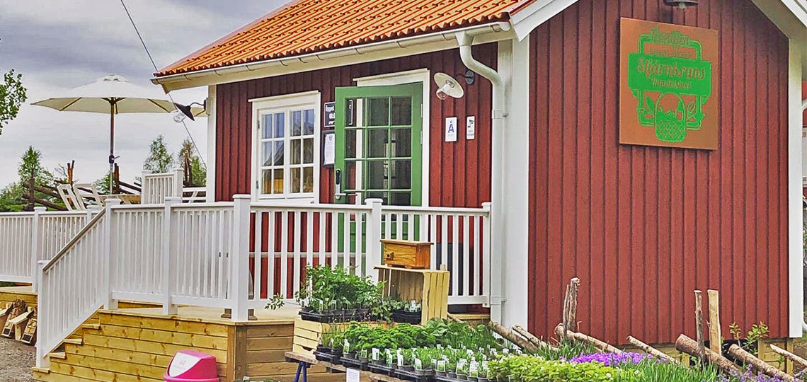 DAY TRIP IN WESTERN ÅSNEN - 60 KM