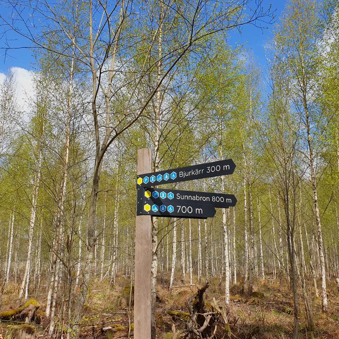 Wanderung im Nationalpark Åsnen
