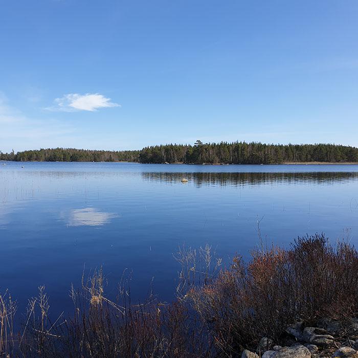 Wanderung nahe am Wasser - 6km